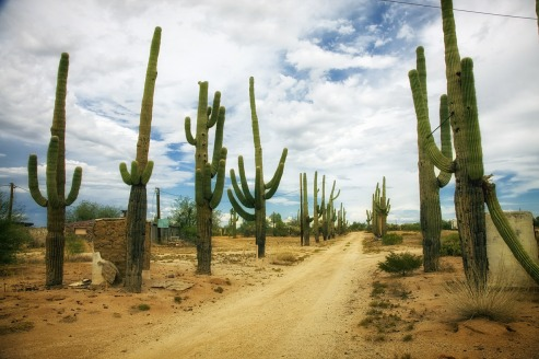 Desert Road (Pixabay)