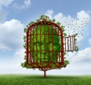 Face in Cage (Shutterstock)