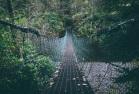 Footbridge (Pixabay)