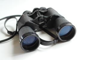 binoculars-pixabay