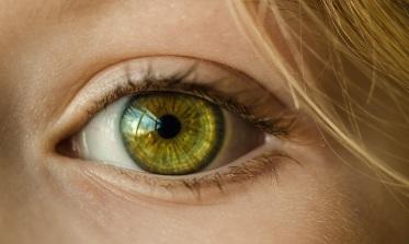 green-eye-pixabay